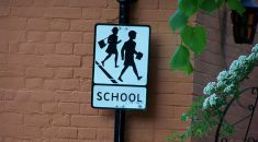 A 'school' road sign against a wall